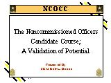 Noncommissioned Officers Candidate Course: a validation of potential.