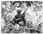Soldier kneeling in the jungle.